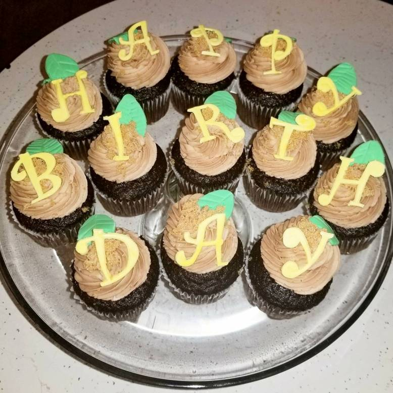 Jungle Inspired Birthday Cupcakes